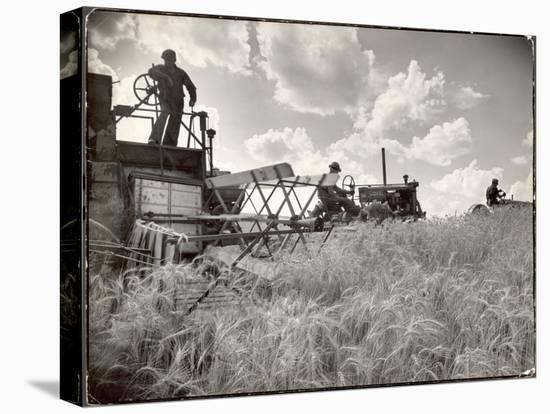 Kansas Farmer Driving Farmall Tractor as He Pulls a Manned Combine During Wheat Harvest-Margaret Bourke-White-Stretched Canvas Print