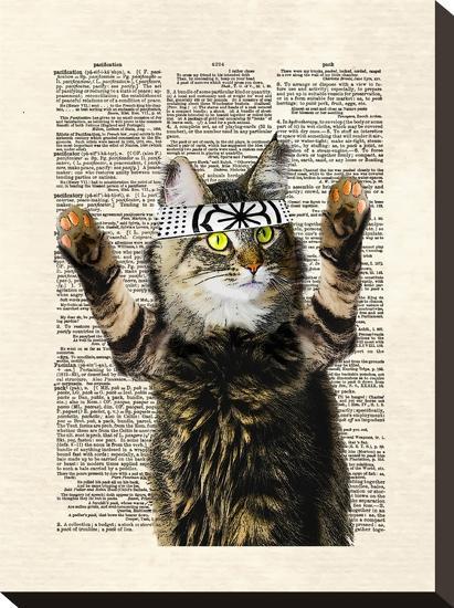 Karate Kitty-Matt Dinniman-Stretched Canvas Print