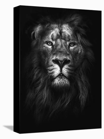 King of Kings-Design Fabrikken-Stretched Canvas Print