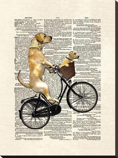 Labrador Bike-Matt Dinniman-Stretched Canvas Print