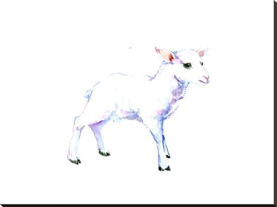 Lamb-Suren Nersisyan-Stretched Canvas Print
