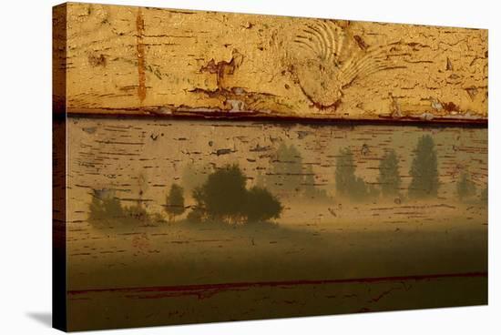 Landscape on Wood I-Irena Orlov-Stretched Canvas Print