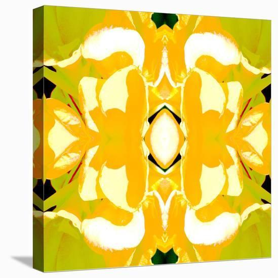 Lemon Canna2-Rose Anne Colavito-Stretched Canvas Print