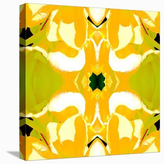 Lemon Canna-Rose Anne Colavito-Stretched Canvas Print