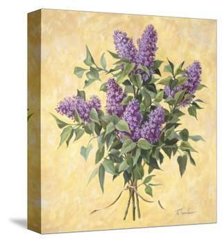 Lilac Season II-Telander-Stretched Canvas