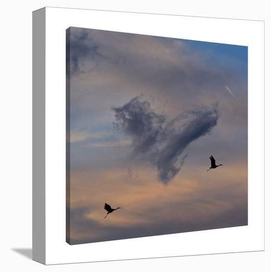 Live In My Heart, Pay No Rent-Dominic Liam-Gallery Wrapped Canvas