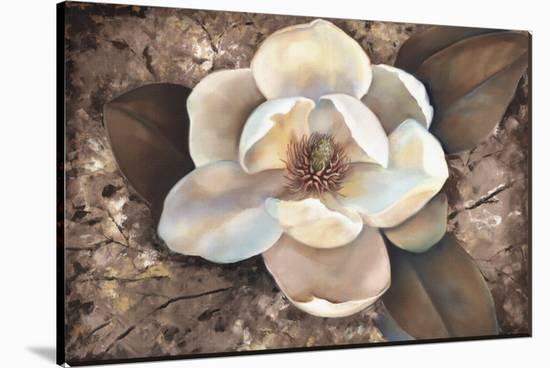 Magnolia II-Louise Montillio-Stretched Canvas Print
