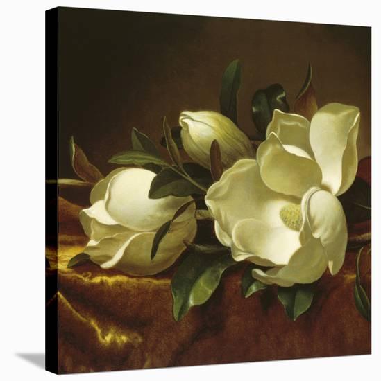Magnolia Still Life II (detail)-Martin Johnson Heade-Stretched Canvas Print