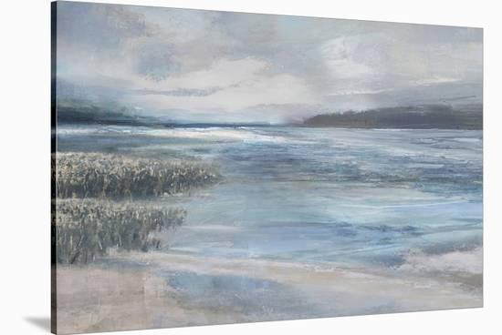 Marshland Milieu-Paul Duncan-Stretched Canvas Print
