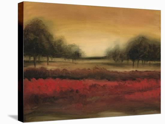 McIntire Grove I-Ethan Harper-Stretched Canvas Print