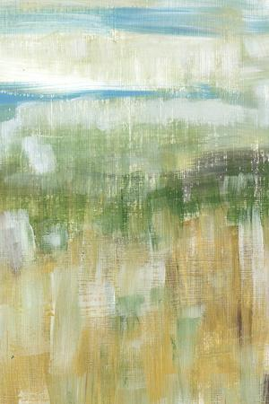 Meadow Memory II-Lisa Choate-Stretched Canvas Print