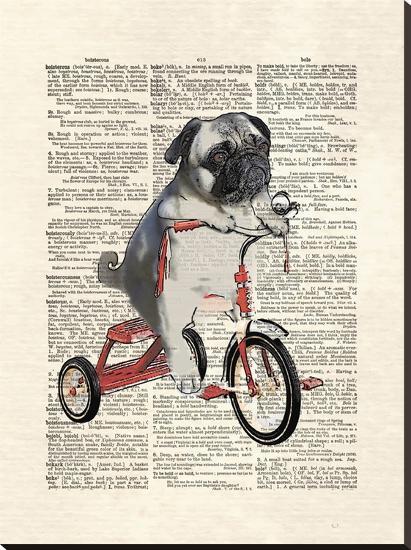 Mike The Trike-Matt Dinniman-Stretched Canvas Print