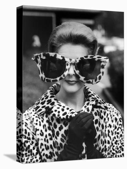 Model June Pickney Sporting Leopard Fur Coat and Huge Leopard Fur Rimmed Sunglasses-Stan Wayman-Stretched Canvas Print