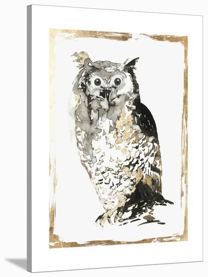 Moonlighter-PI Creative Art-Stretched Canvas Print