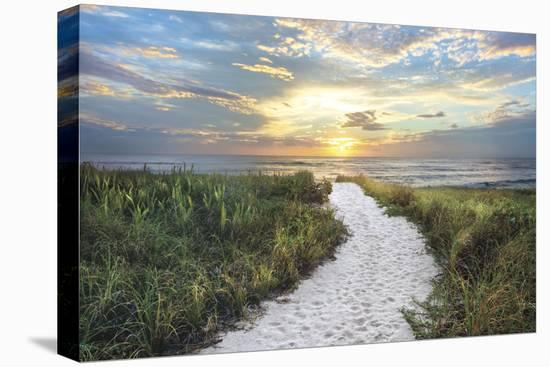 Morning Trail-Celebrate Life Gallery-Stretched Canvas Print