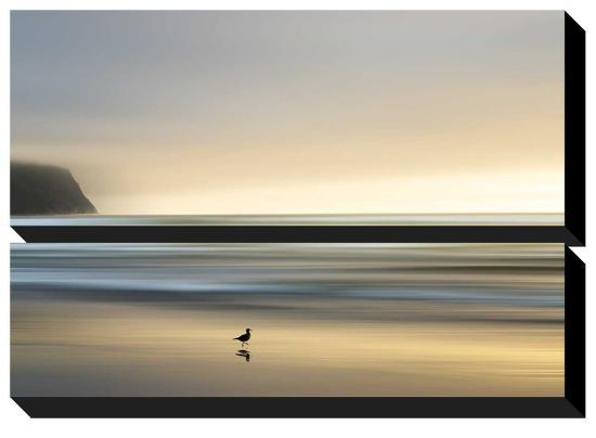 Morning Visit-Marvin Pelkey-Stretched Canvas