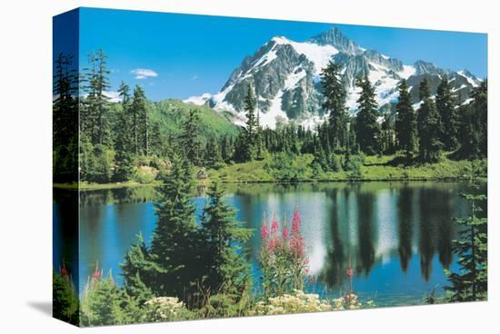 Mount Shuksan--Stretched Canvas Print