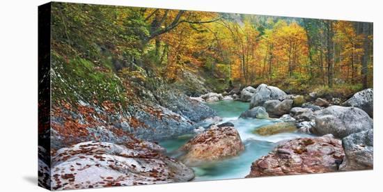 Mountain brook and rocks, Carinthia, Austria-Frank Krahmer-Stretched Canvas Print