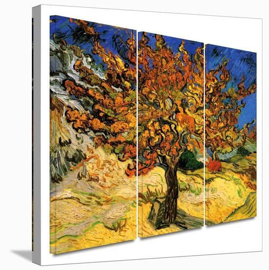 Mulberry Tree 3 piece gallery-wrapped canvas-Vincent van Gogh-Gallery Wrapped Canvas Set