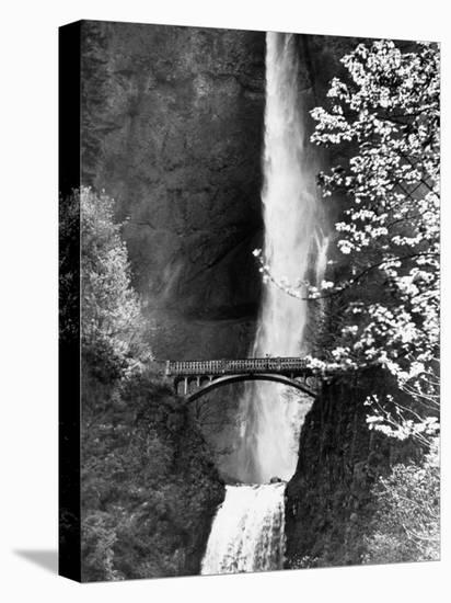 Multnomah Falls on Larch Mt. Where the Water Empties into the Columbia River-Alfred Eisenstaedt-Stretched Canvas Print