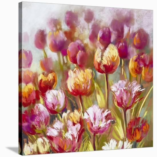 My oh My-Nel Whatmore-Stretched Canvas Print