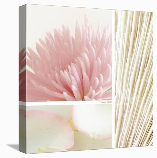 Mystic Calm--Stretched Canvas Print