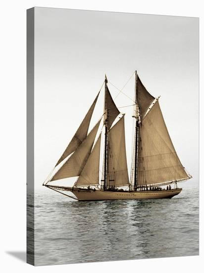 Mystic Journey I-Frederick J^ LeBlanc-Stretched Canvas Print