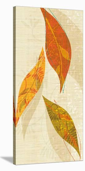 Natural Harmony I-Tandi Venter-Stretched Canvas Print