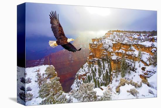Natural Splendors Alaska V--Stretched Canvas Print