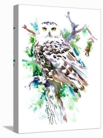 Northern Owl-Suren Nersisyan-Stretched Canvas Print
