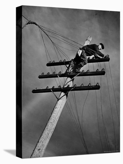 NY Telephone Co. Lineman Wallace Burdick Repairs Telephone Lines Between Valhalla and Brewster-Margaret Bourke-White-Stretched Canvas Print