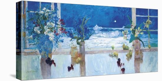 Ocean Moonlight-S^ Burkett Kaiser-Stretched Canvas Print