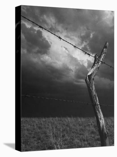 On a Small Farm, Ominous Clouds Overhead, Outlined by Barbed Wire Fencing-Nat Farbman-Stretched Canvas Print