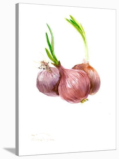 Onions 3-Suren Nersisyan-Stretched Canvas Print
