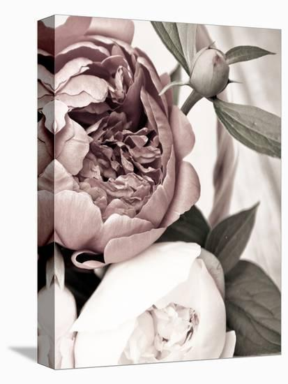 Opulent 2-Design Fabrikken-Stretched Canvas Print