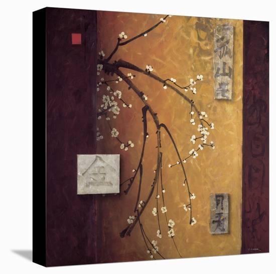Oriental Blossoms II-Don Li-Leger-Stretched Canvas Print