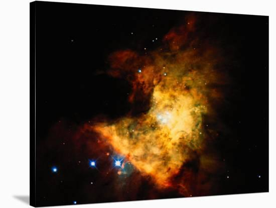 Orion Nebula-Terry Why-Stretched Canvas Print