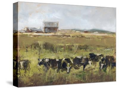 Out to Pasture I-Ethan Harper-Stretched Canvas Print