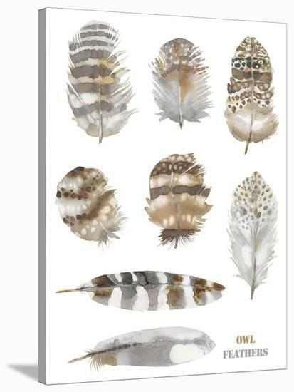 Owl Feathers-Sandra Jacobs-Stretched Canvas Print