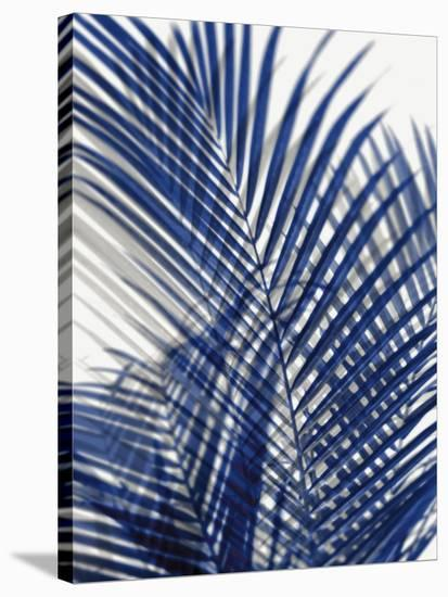 Palm Shadows Blue I-Melonie Miller-Stretched Canvas Print
