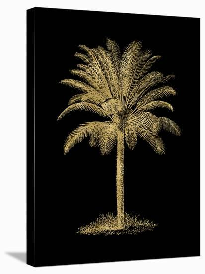 Palm Tree Golden Black-Amy Brinkman-Stretched Canvas Print