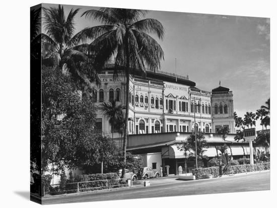 Palm Trees Surrounding the Raffles Hotel-Carl Mydans-Stretched Canvas Print