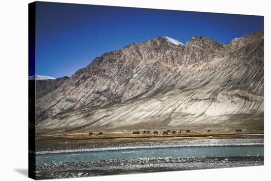 Panoramic Placidness-Andrew Geiger-Stretched Canvas Print