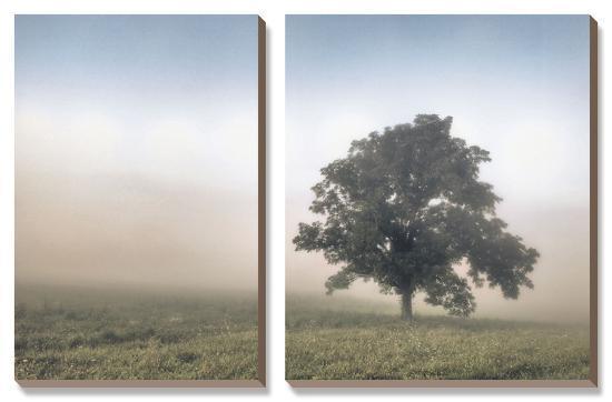 Paradise Haze-Todd McPhetridge-Canvas Art Set