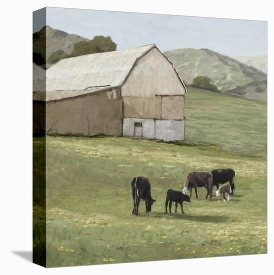 Pastoral - Favourite Field-Mark Chandon-Stretched Canvas Print