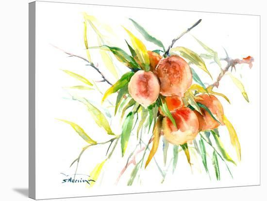 Peaches1-Suren Nersisyan-Stretched Canvas Print