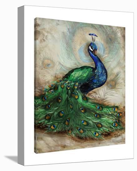 Peacock II-Tre Sorelle Studios-Gallery Wrapped Canvas