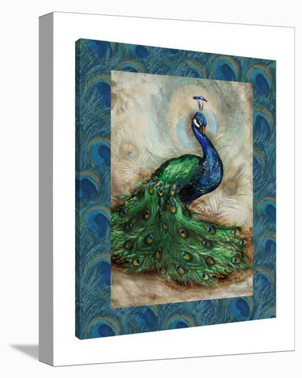 Peacock With Border II-Tre Sorelle Studios-Gallery Wrapped Canvas