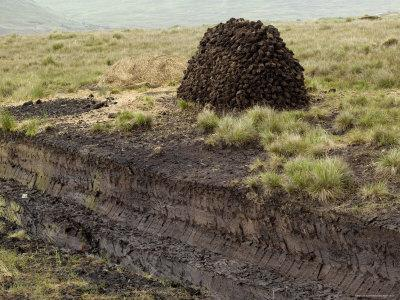 Peat Cutting, Connemara, County Galway, Connacht, Republic of Ireland-Gary Cook-Stretched Canvas Print