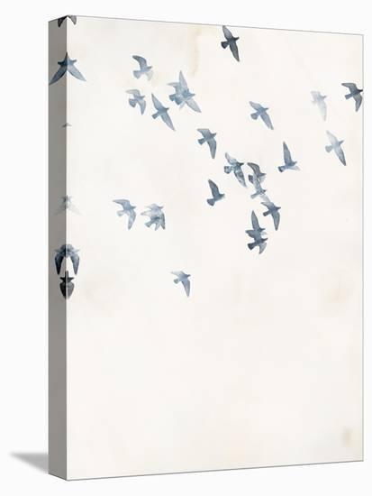 Pigeons Sky-Design Fabrikken-Stretched Canvas Print